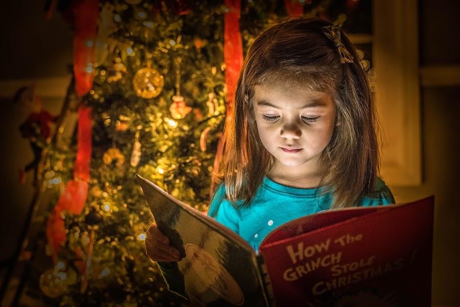 Christmas Magic Book by Lynn Kirchhoff - Public Holidays Christmas ( child, magic book, reading, magic, girl, grinch, christmas, toddler, dr. suess,  )
