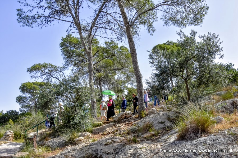Национальный парк Сорек, Израиль. Экскурсия гида в Израиле Светланы Фиалковой.