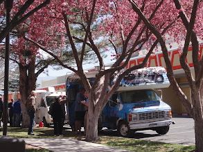 Photo: Food trucks offering a variety of excellent lunch dishes for all kinds of diets.