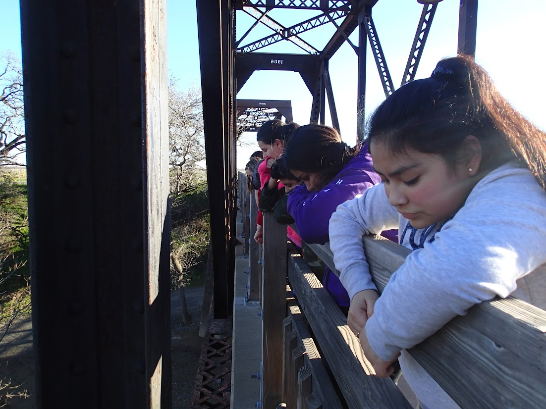 Students look down at Putah Creek from the Winters railroad bridge.