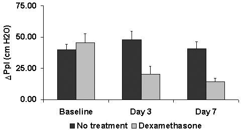 Effect of dexamethasone treatment (0. 1 mg/kg q24h) on effort of breathing (DPplmax) in heaves-affected horses.