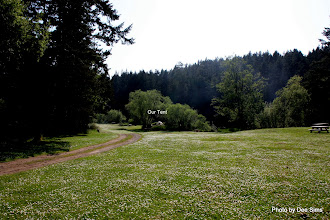 Photo: (Year 2) Day 333 -  Our Campground Vista