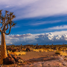 Kakamas by Theuns de Bruin - Landscapes Deserts ( kakamas )