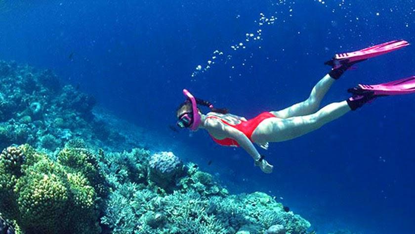 Snorkeling o buceo con tubo en Cabo de Gata.