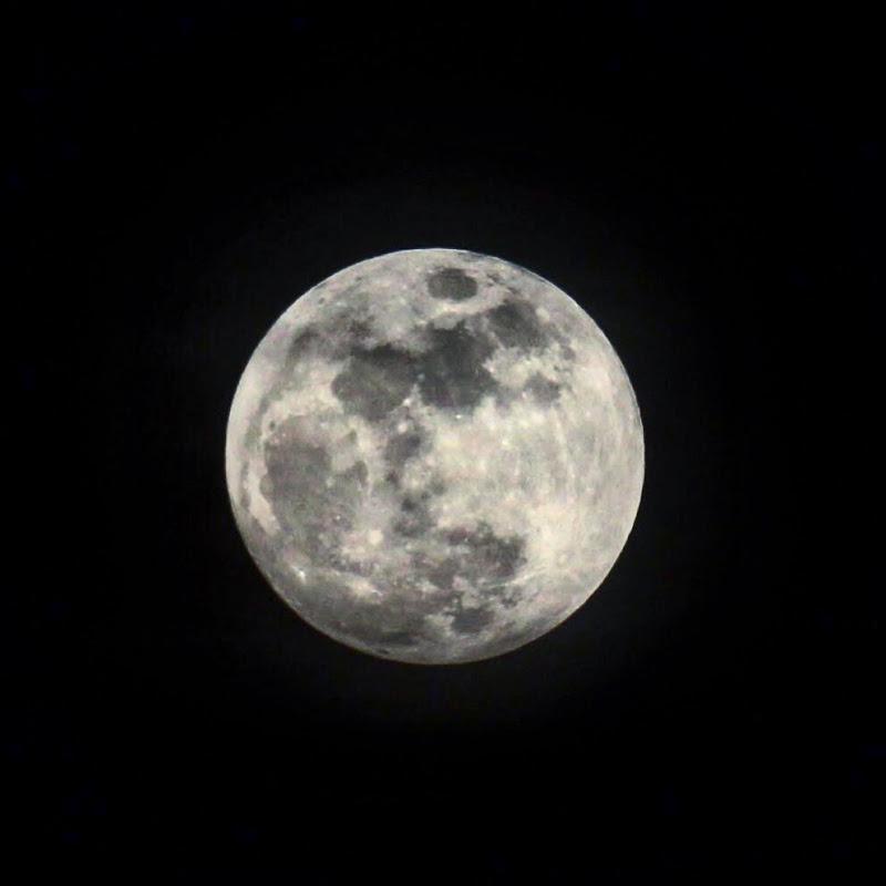 Luna di Xxl_92_reflex