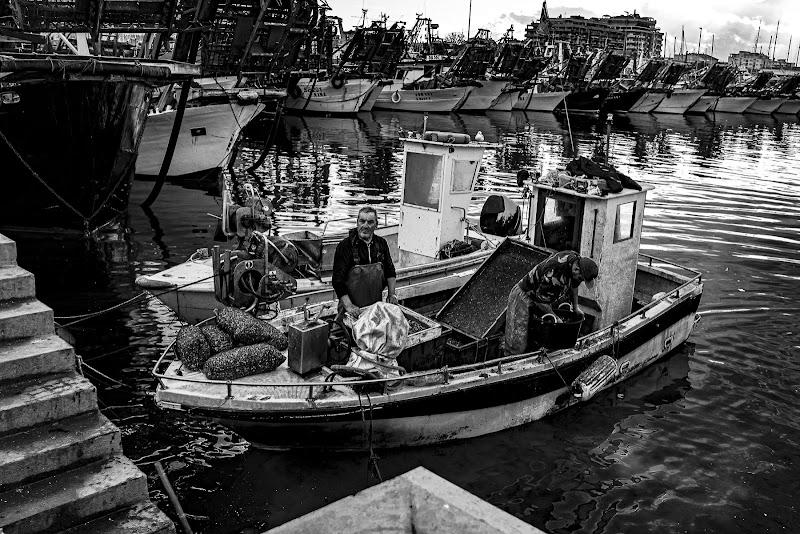 ritorno al porto di Alessio_fiè