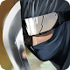 Ninja Revenge (game)