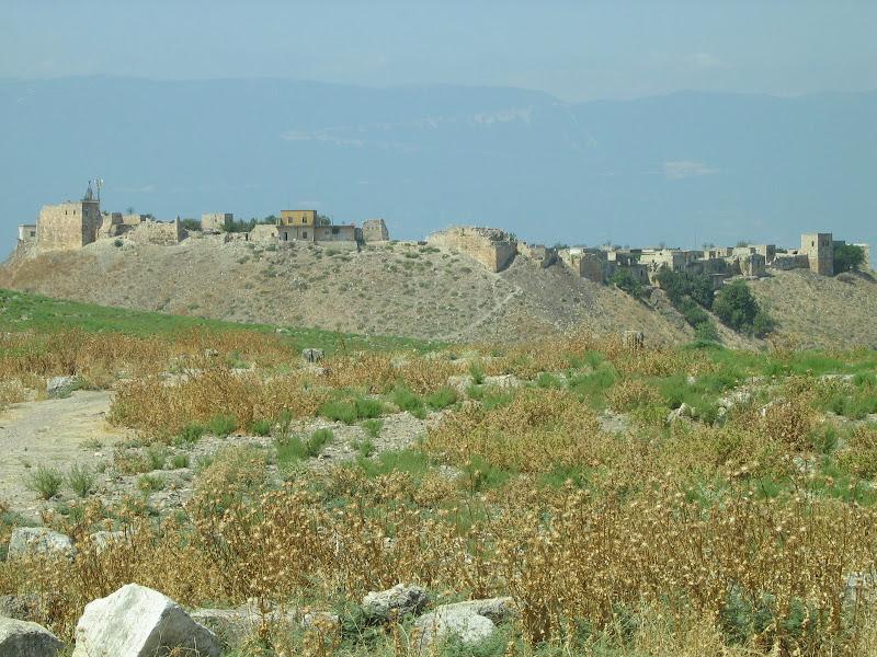 Pianura della Siria di archiviobesozzi