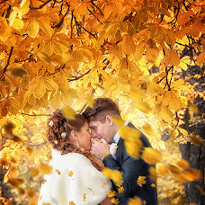 Wedding photographer Mariya Vlasova (PhotoPhoenix). Photo of 23.11.2013