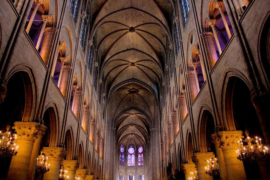 Notre Dame by Alex Field - Buildings & Architecture Other Interior ( paris, church, notre dame, france )