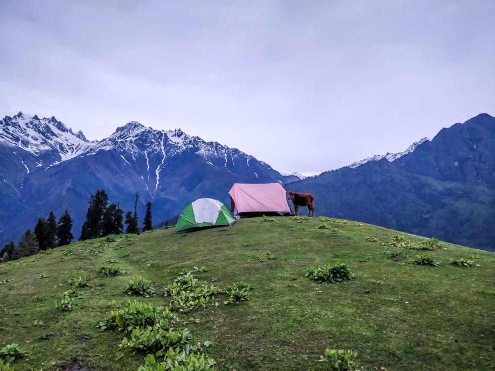 camping+bhunbhuni+parvati+himachal+himalaya