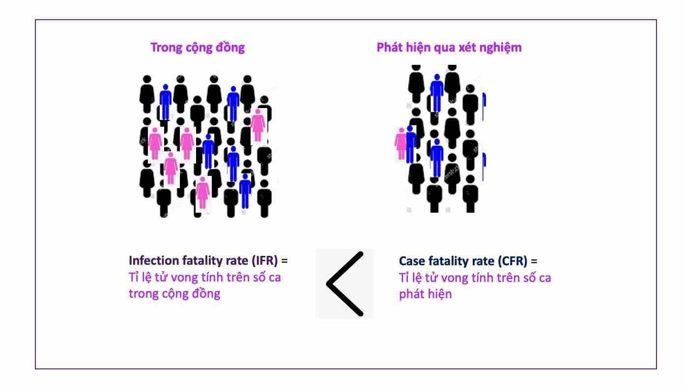 Phân biệt số ca nhiễm trong cộng đồng và số ca phát hiện. Suy ra tỉ lệ tử vong thật (IFR) thấp hơn tỉ lệ tử vong phát hiện (CFR).