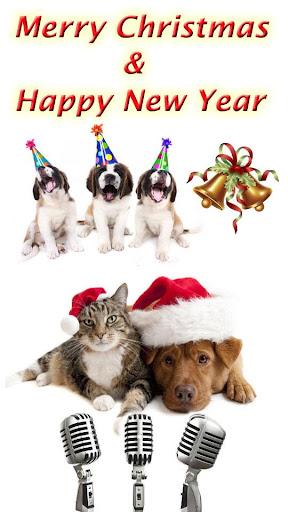 圣诞节搞笑动物铃声 - 小猫 小狗 小鸡 小鸟