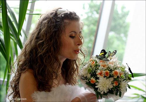 Сад бабочек «Феерия» в Уфе