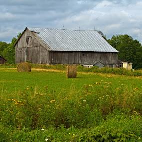 Rural Respite by Reva Fuhrman - Landscapes Prairies, Meadows & Fields ( barn rural hay old homestead hill,  )