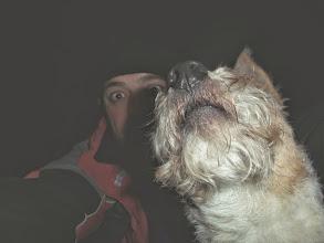 Photo: Białogórski pies powitalny