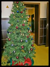 Photo: El árbol de Navidad del colegio