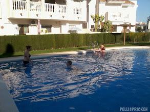 Photo: På eftermiddagen tar dom ett dopp i poolen