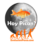 Hoy Pican icon
