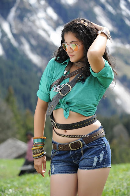 Taapsee Pannu in shorts, Taapsee Pannu navel, Taapsee Pannu thunder, Taapsee Pannu hot tollywood