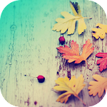 Autumn - Launcher Theme