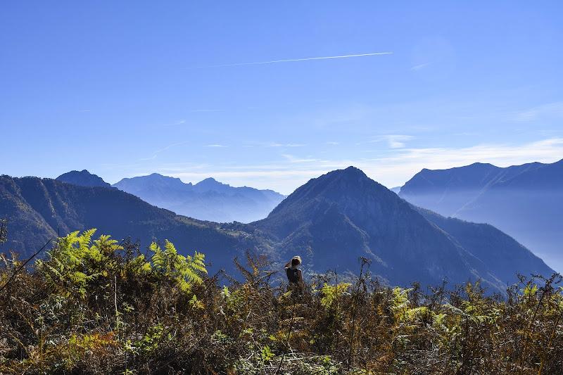 Immersa nella Natura di PicOnTheRun - ANDREA PAGANINI