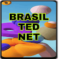TED NET VPN icon