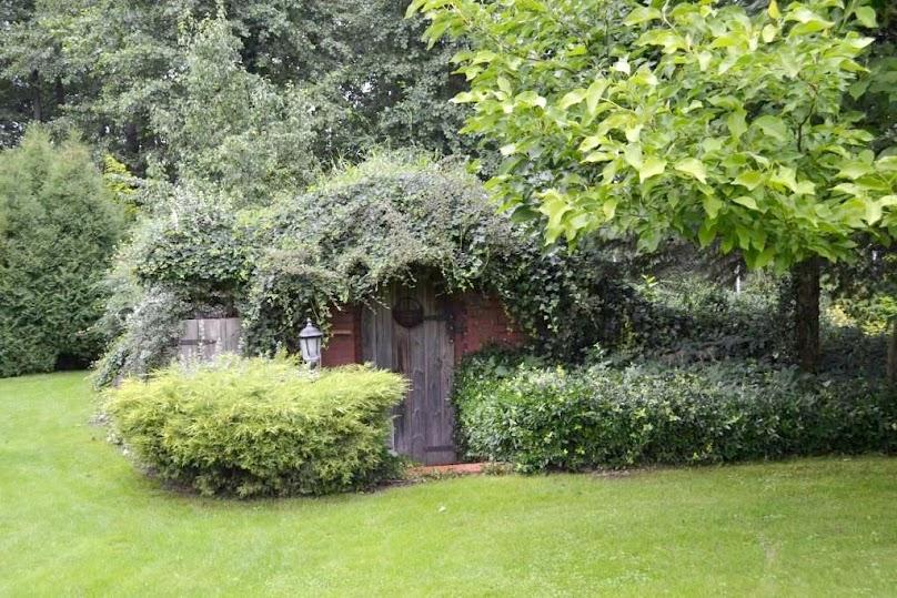 Ziemianka - idealna do Twojego ogrodu