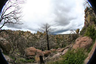 Photo: On the Eco Canyon Loop Trail.