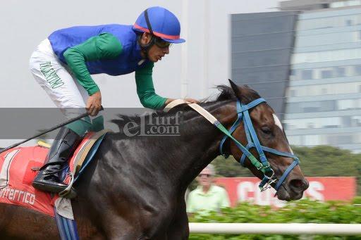Sweet Caroline (Lido Palace) se queda con Handicap (2000m-Pasto-MONT). - Staff ElTurf.com