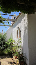 Photo: Rosemary, Ermita Sant Tomas, Altea