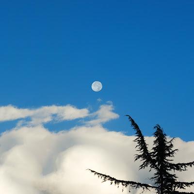 Ecco la Luna...... di renzodid