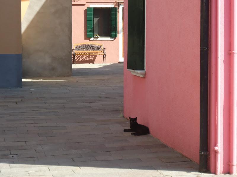 pomeriggio estivo a Burano di Giomi
