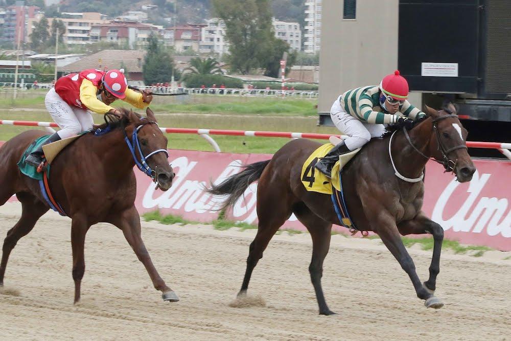 Bochornosa (Boboman) conquista Condicional (1100m-Arena-VSC).