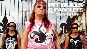 Pit Bulls & Parolees: Tia's Tales thumbnail