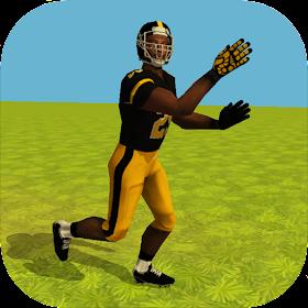 Football Simulator Rampage 3D
