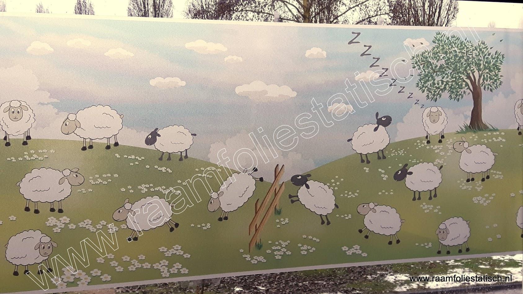 Statische raamfolie schapen kleuren