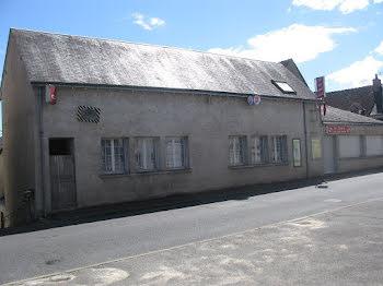 locaux professionels à Chisseaux (37)