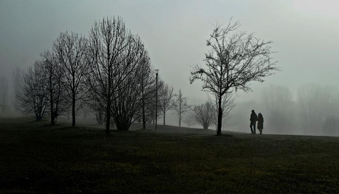 Due passi nel parco di FZATOX