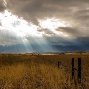 Morning Near Delta by John Shelton - Landscapes Prairies, Meadows & Fields ( clouds, field, farm, fence, grass, utah, sunrise, morning, landscape,  )
