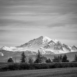 Mount Baker  by Todd Reynolds - Black & White Landscapes