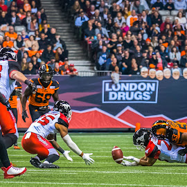 Fumble by Garry Dosa - Sports & Fitness American and Canadian football ( sports, teams, city, players, professionals, cfl, black, spectators, football, people, fumble, red, orange, number, white, indoors, action, stadium, evening, sport, colours )