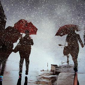 Rainy Walk by Svetlana Micic - City,  Street & Park  Street Scenes ( umbrellas, street, walk, people, rain )