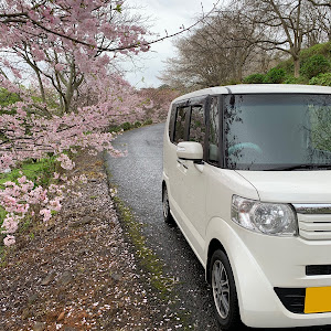 Nボックス JF1のカスタム事例画像 miho☆NBさんの2020年03月29日20:12の投稿