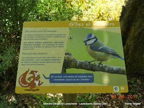 Photo: nu veel info over de natuur