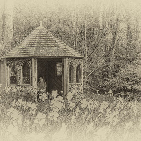 The hut by Cornish Nige  - Digital Art Places ( flowers, b&w, hdr, buildings, trees )