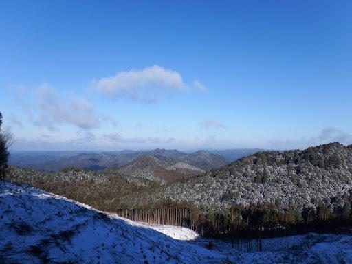 伐採地からの展望(北側)