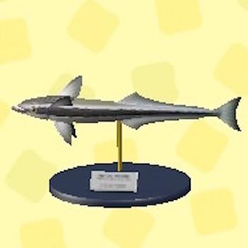値段 コバンザメ