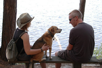 Photo: A couple and dog relax next to Spectacle Pond, Brighton State PArk