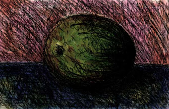 Photo: Lime 30